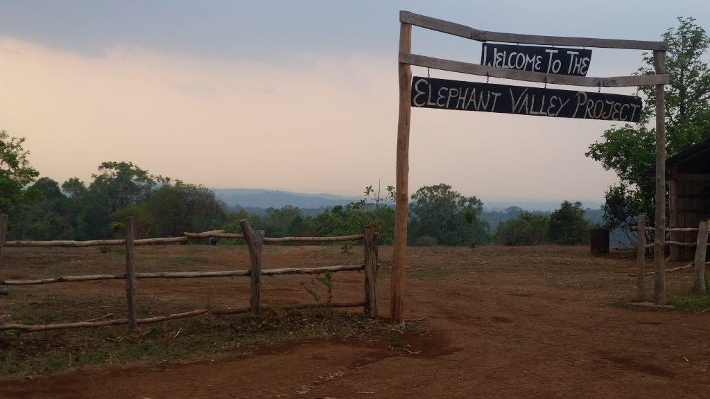 EVP Entrance